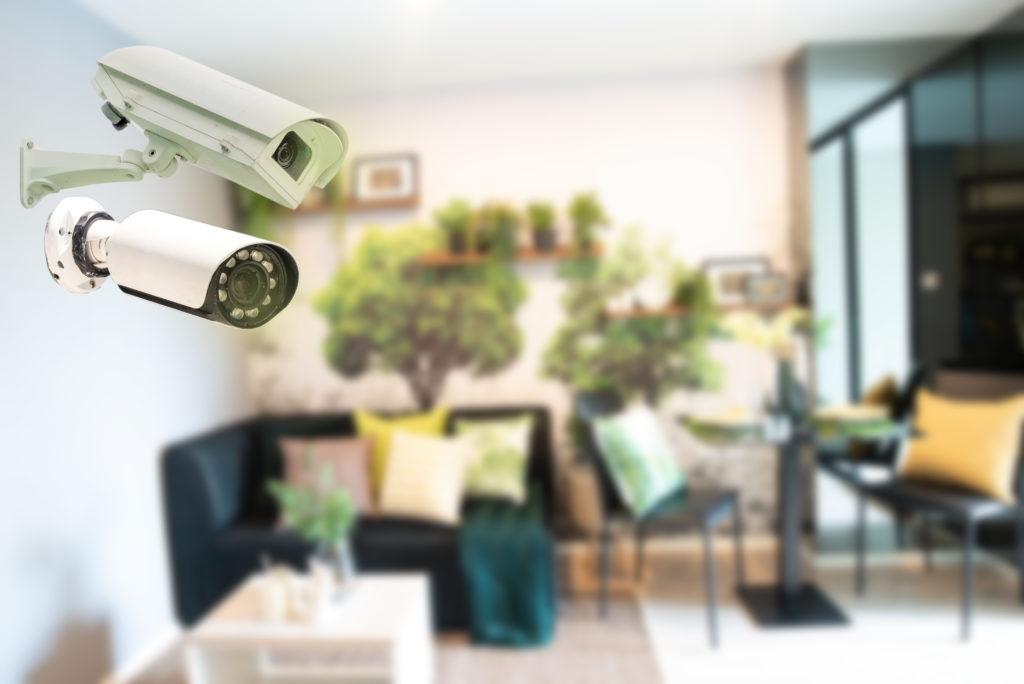 cannabis-growers-cloud-video-surveillance